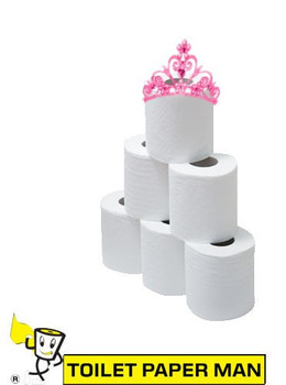 Princess Elsa - 2ply 210 Sheets per Roll - 96 Rolls