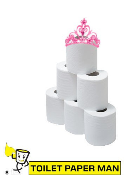 Princess Elsa - 2ply 210 Sheets per Roll - 480 Rolls