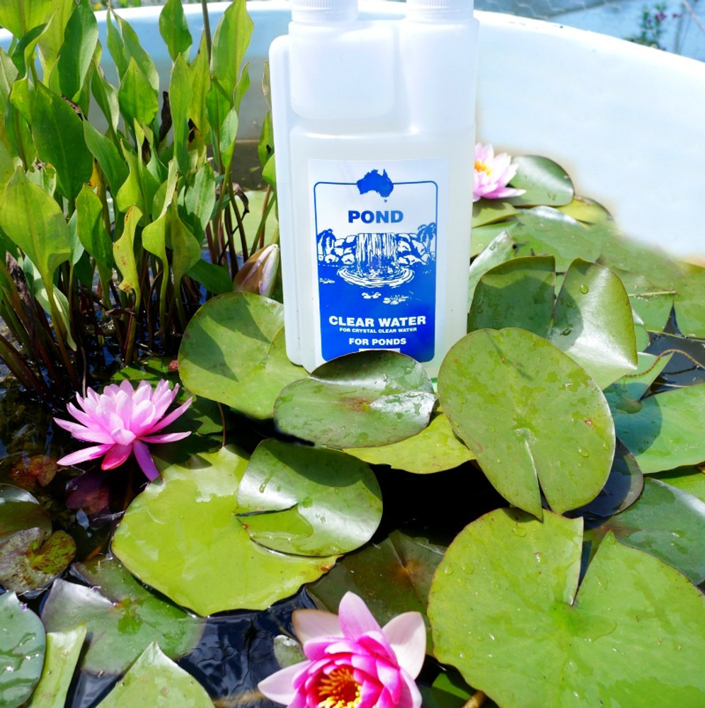 buy crystal clear pond water treatment