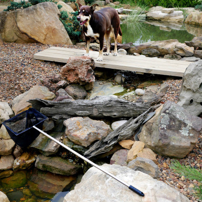 Soft net for catching koi and goldfish from the pond