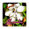 Vintage Sweet Magnolia Metal Sign   Inches 12 x 12 Inches