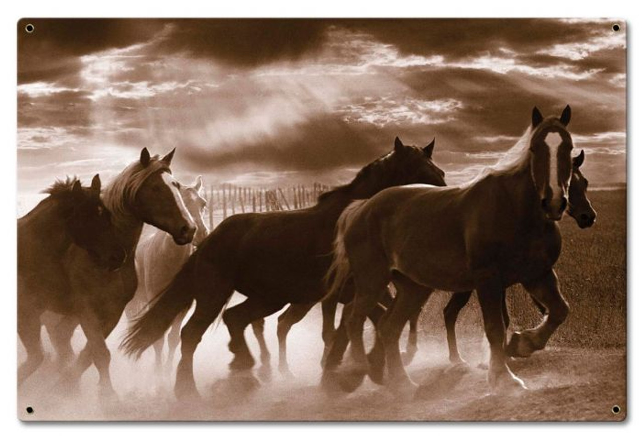 Running Horses Metal Sign 24 x 16 Inches