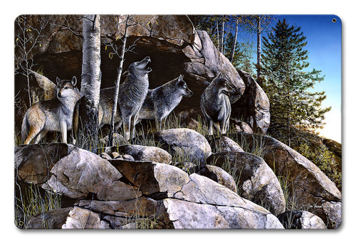 Rocky Outpost Metal Sign 12 x 18 Inches