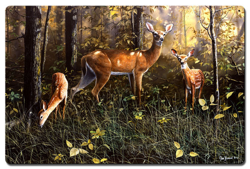 Emerald Forest Metal Sign 24 x 16 Inches
