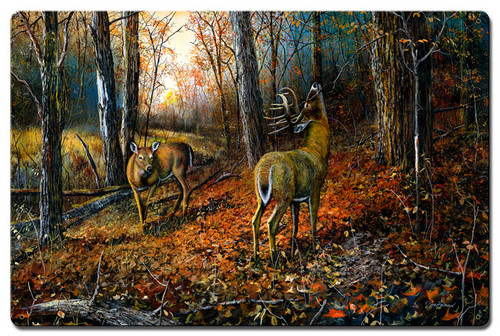Signs Of Autumn Metal Sign 16 x 24 Inches