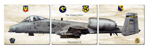 Thunderbolt Ii Metal Sign 48 x 14 Inches