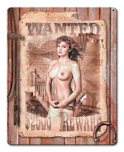 Wanted Metal Sign 12 x 15 Inches