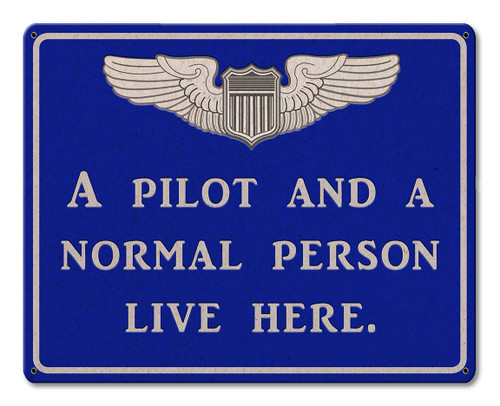 Pilot And Normal Person Metal Sign 15 x 12 Inches