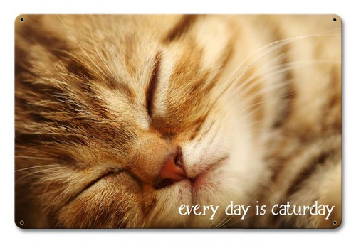 Every Day Caturday Metal Sign 18 x 12 Inches