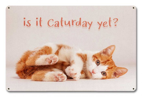Caturday Metal Sign 18 x 12 Inches