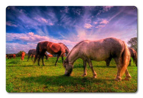 Wild Horses Metal Sign 18 x 12 Inches