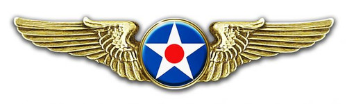 Air Cops Wings Cut-out Metal Sign 16 x 4 Inches