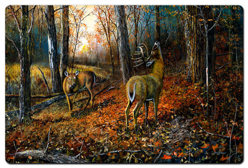 Signs Of Autumn Metal Sign 24 x 36 Inches