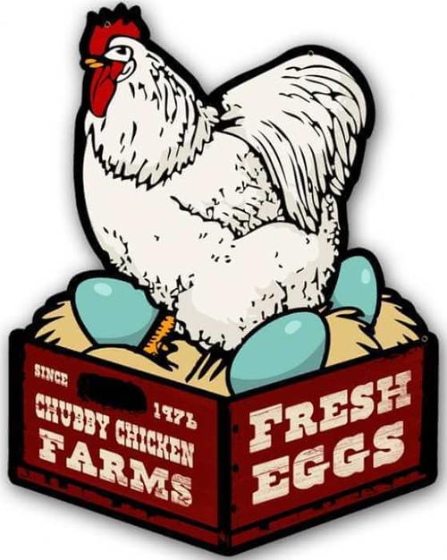 Retro Chicken Fresh Eggs Custom Shape Metal Sign 14 x 18 Inches
