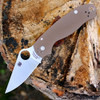 "Spyderco C223GPBN  Para-Military 3 , 2.95"" CPM S35-VN Plain Blade, Earth Brown G-10 Handle"