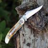 Case 65314 A/O Mid-Folding Hunter, Bonestag Handle (6.51265AC SS)