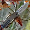 CRKT Homefront K270GKP, AUS 8 Plain Blade, 6061 Aluminium Handles