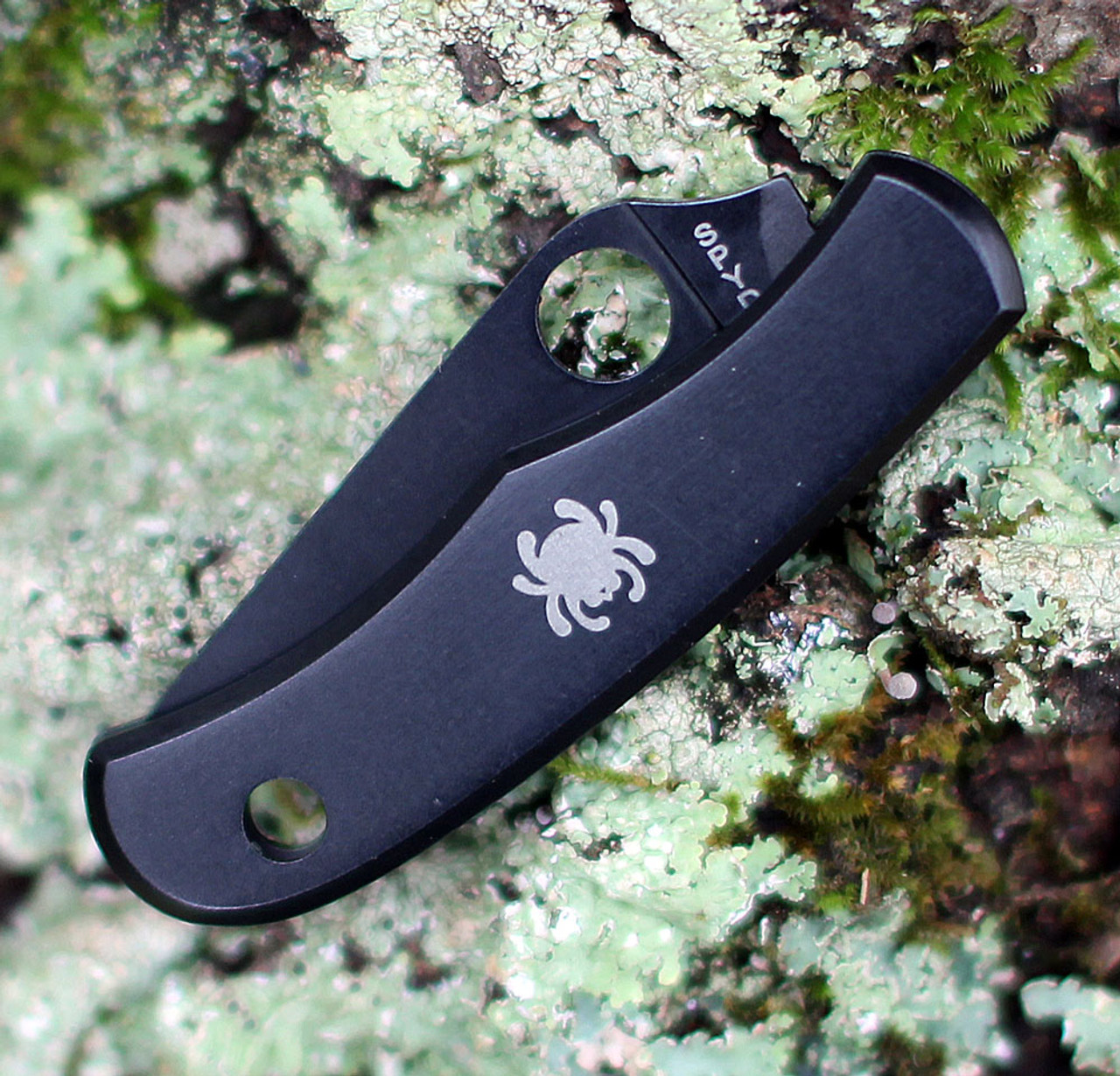 "Spyderco Bug Knife C133BKP, 1.27"" 3Cr Black Plain Blade, Stainless with Black Oxide  Handle"