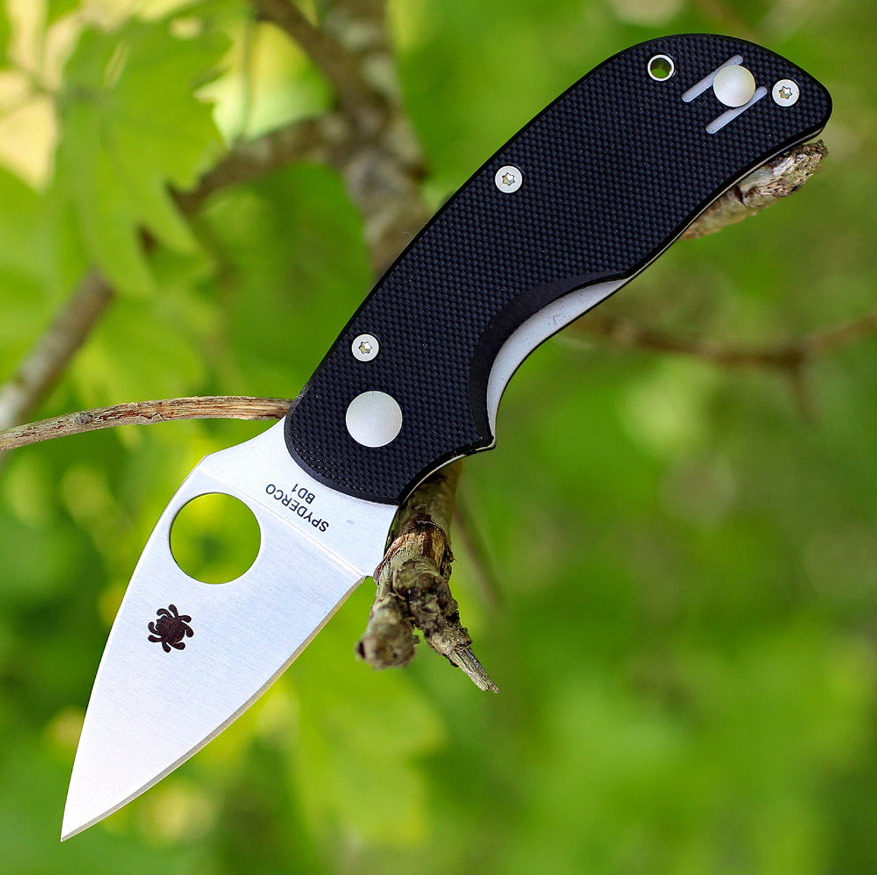 "Spyderco Cat G-10 C129GP, 2.438"" BD1 Plain Blade, G-10 Handle"