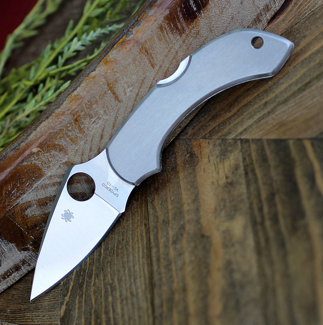 "Spyderco C28P Dragonfly, 2.313"" VG-10 Plain Blade, Stainless Handle"