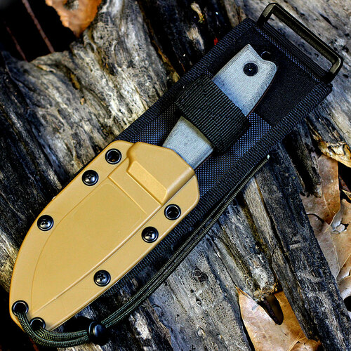 ESEE 3P-MB Plain Edge, Coyote Brown Molded Sheath w/ Black MOLLE Back