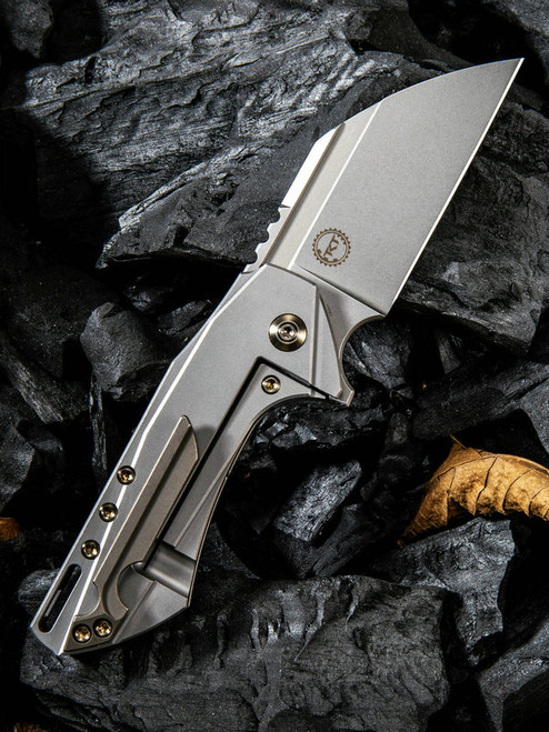 "We Knife Roxi Framelock Folder 820A, 2.6"" Bohler M390 Stonewash Wharncliffe Plain Blade, Gray Titanium Handle"