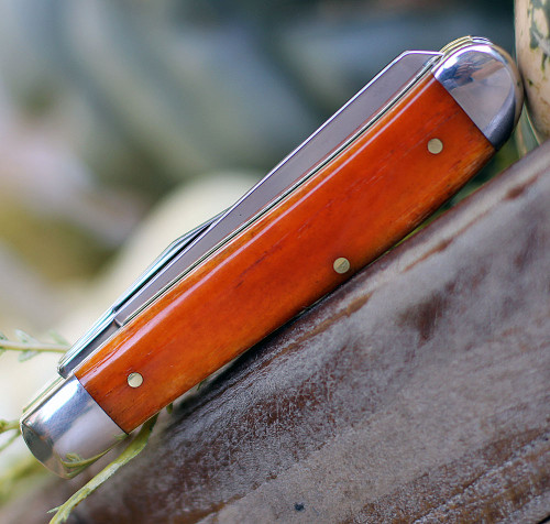 Case 2020Haloween Mini Trapper Persimmon Orange Smooth Bone Handle w/Tin (6207 SS)