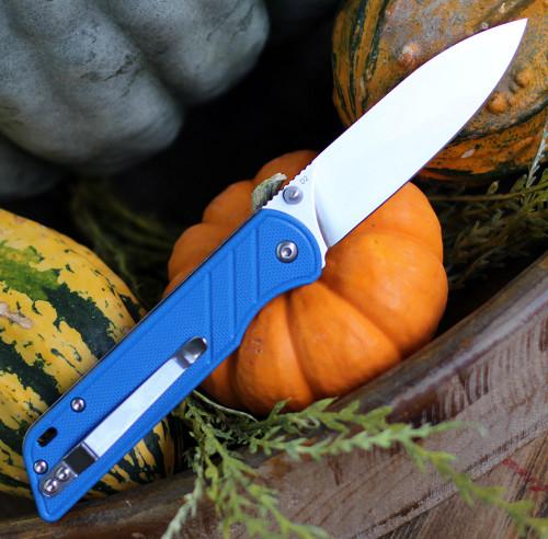 """QSP Knife Parrot Linerlock QS102D, 3.25"""" D2 Satin Blade,  Blue G10  Handle"""