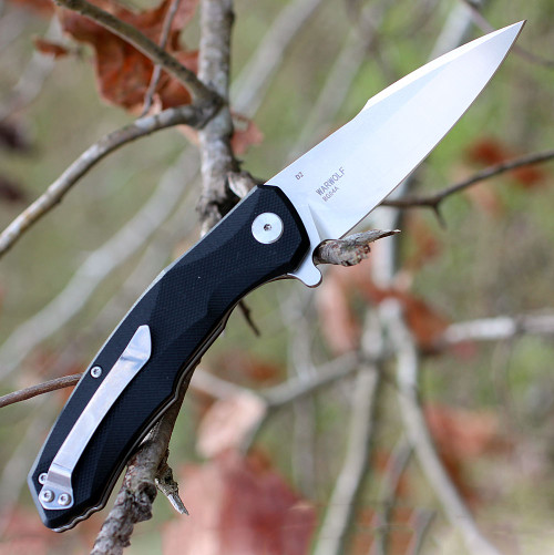 """Bestech G04A Warwolf, 3.5"""" D2 Plain Blade, Black G-10 Handle"""