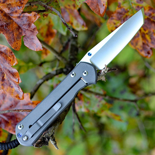 Chris Reeve Large Sebenza 21, 3.62 in S35VN Tanto Point, 6AL4V Titanium Handle (L21-1010)