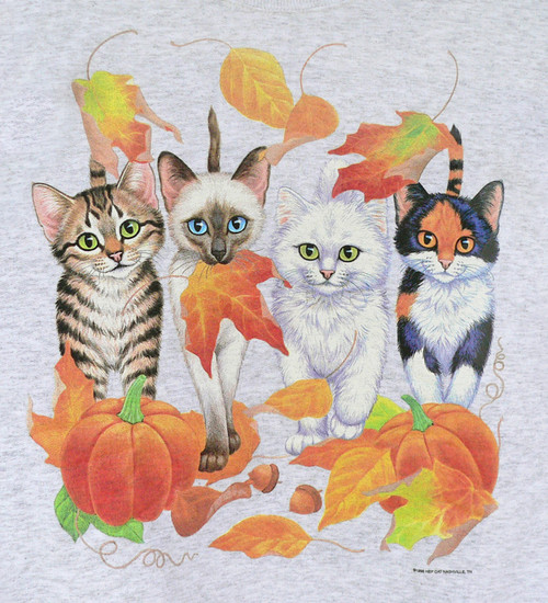 HARVEST KITTENS COMING AND GOING SWEATSHIRT ASH 3X