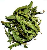 Lemon Verbena Whole