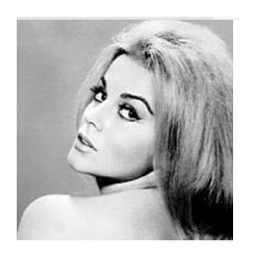 1960's Faux Mink Strip Lashes