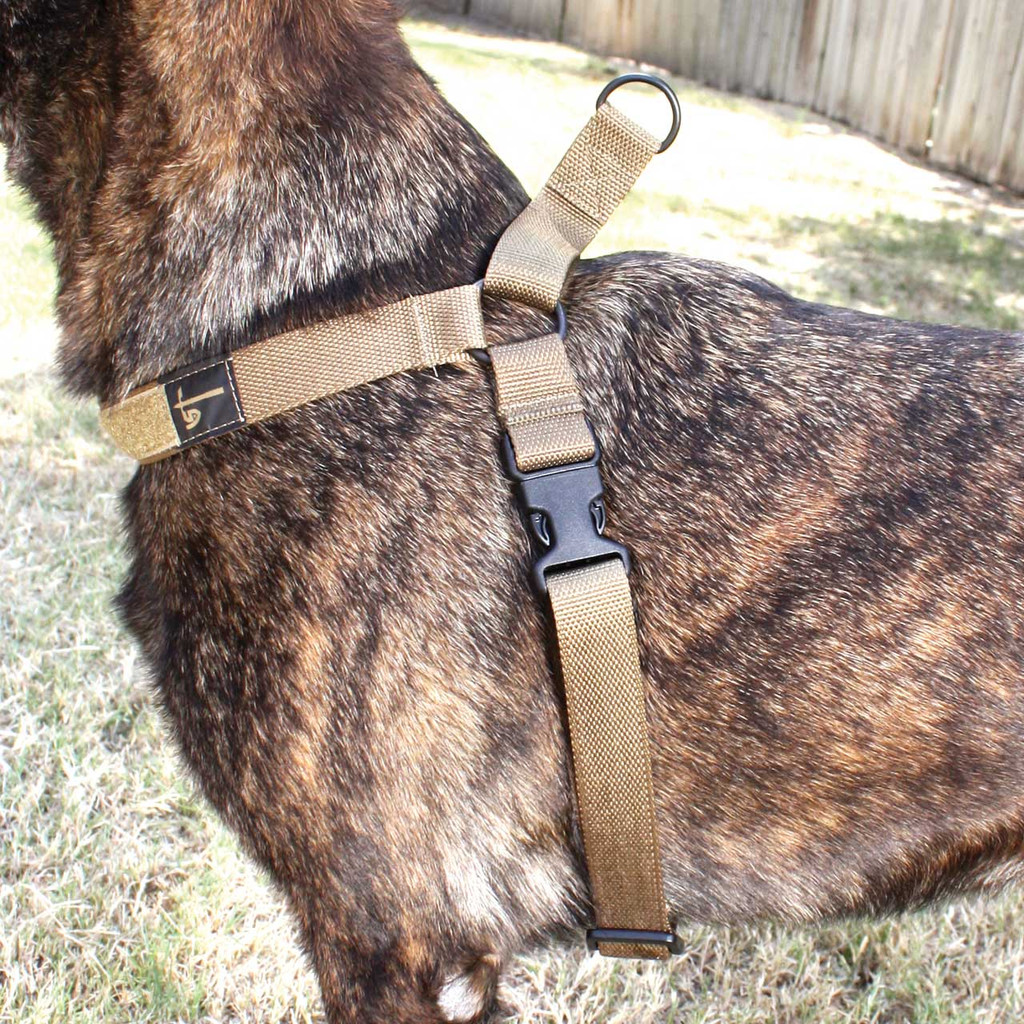 Harness - Coyote