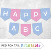 Blue and Pink Bunting Banner