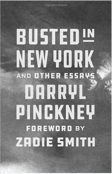 Busted in New York and Other Essays 3769HC