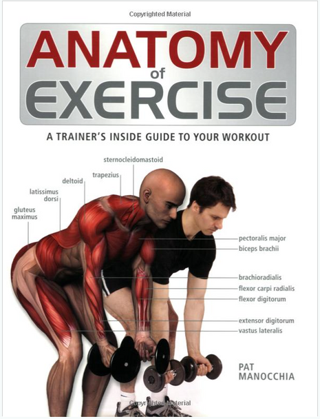 Anatomy of Exercise: A Trainer's Inside Guide to Your Workout 3984PB
