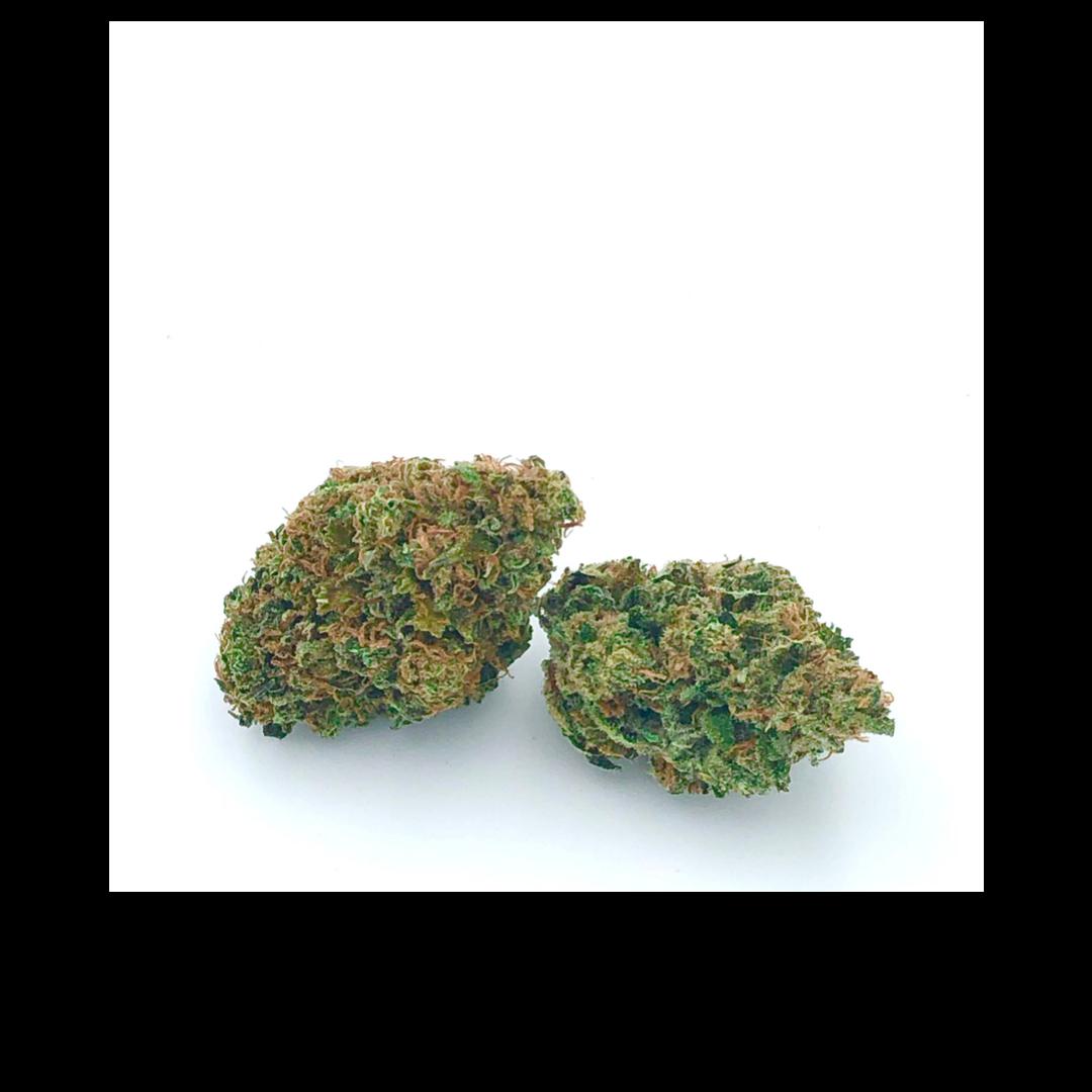2-grams-elektra.png