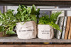 Canvas Planters - Keep Blooming Beautiful One, Plant Kindness, Gather Love