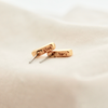 "Gold earrings to show the words ""give"" and ""back"" stamped on the back of the earring."