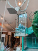 Long Rectangle Hanging Glass Terrarium