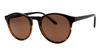 Grad School Sunglasses - Black Tortoise