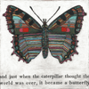 butterfly art print with gallery wrap frame