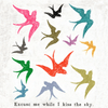 "Colorful bird art print with the phrase ""Excuse me while I kiss the sky"" printed on the bottom."