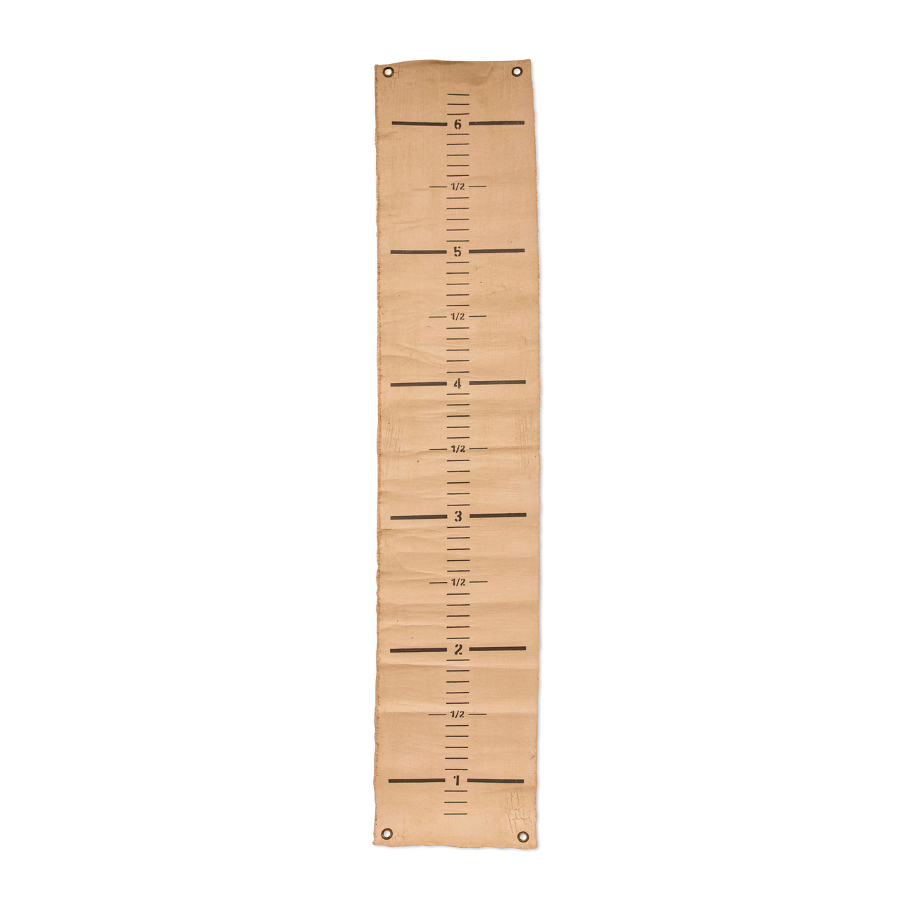Painted canvas growth chart