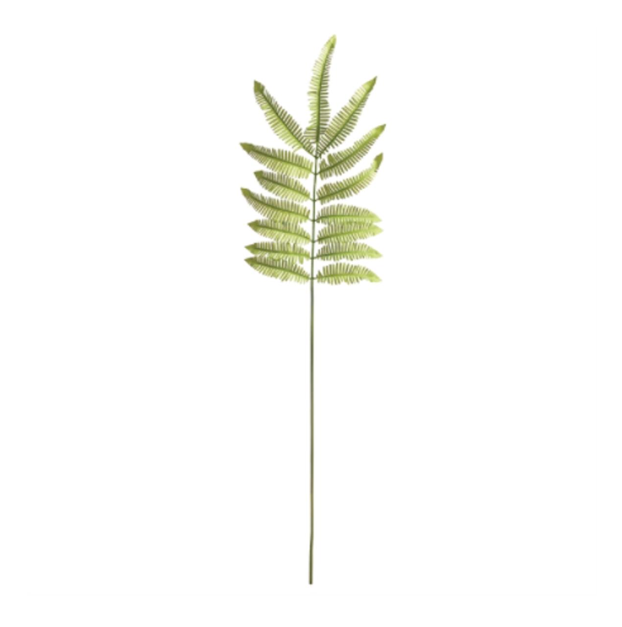 "Tree Fern Stem- 42.5"""