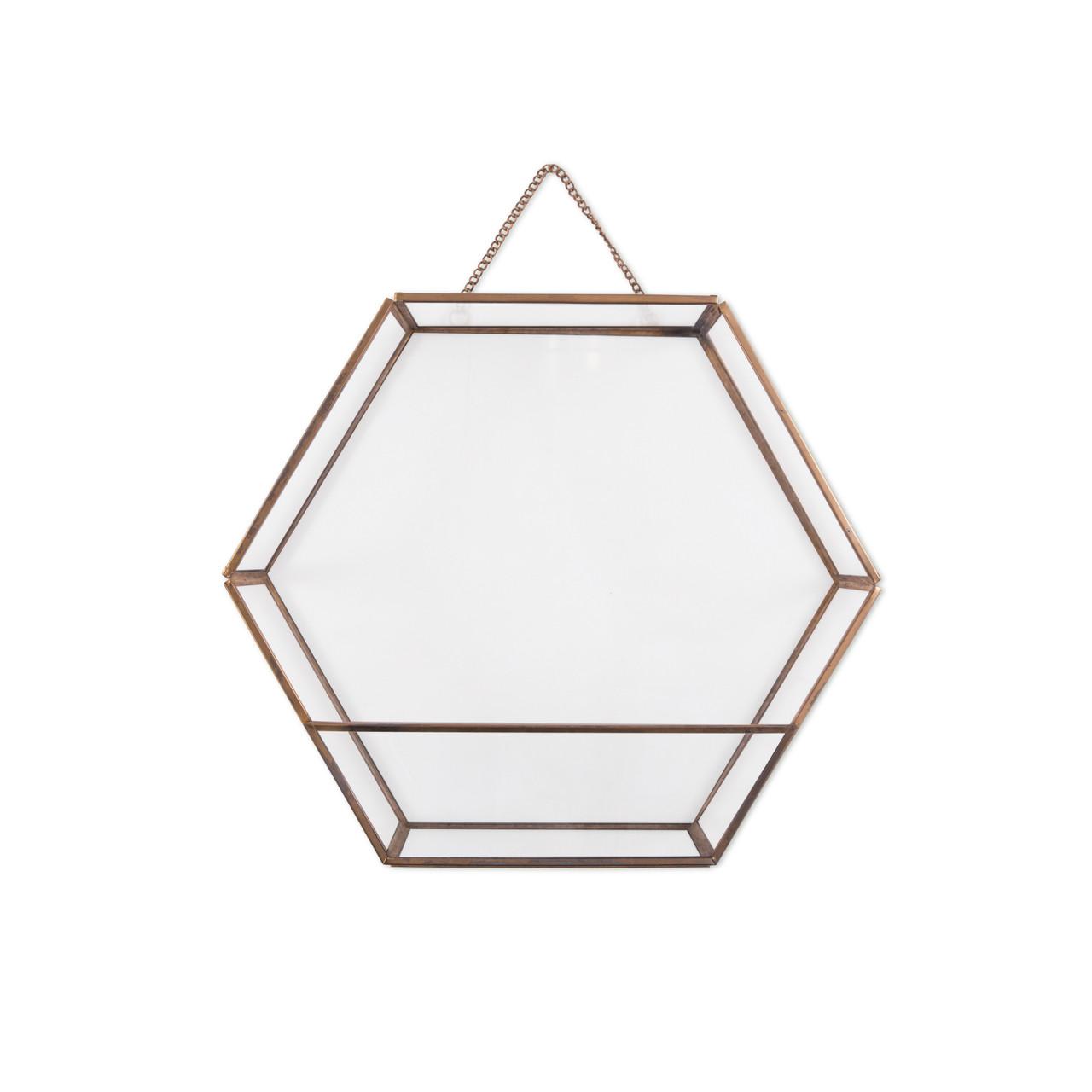Half Glass Hexagon Hanging Terrarium