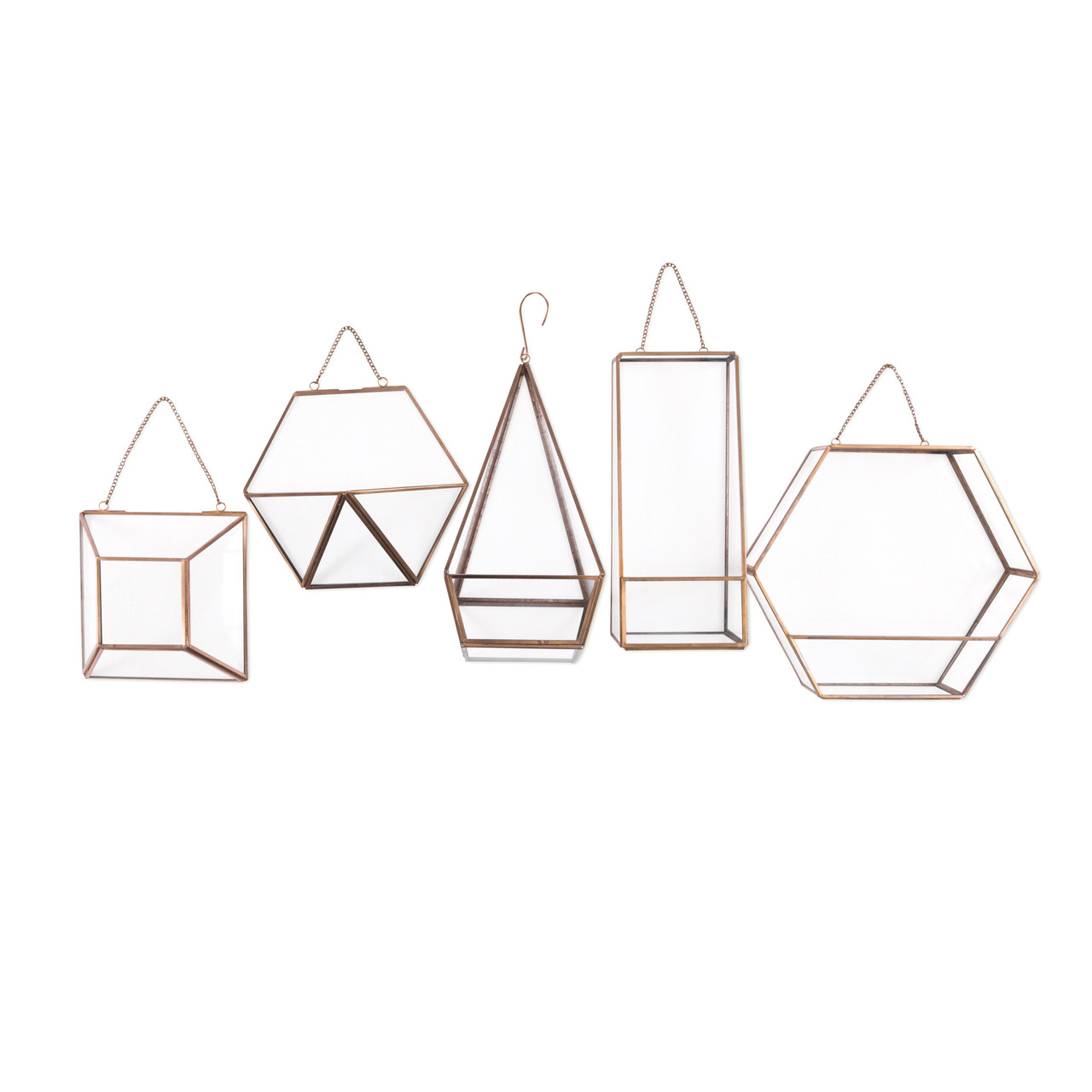 Hanging Glass Terrariums group