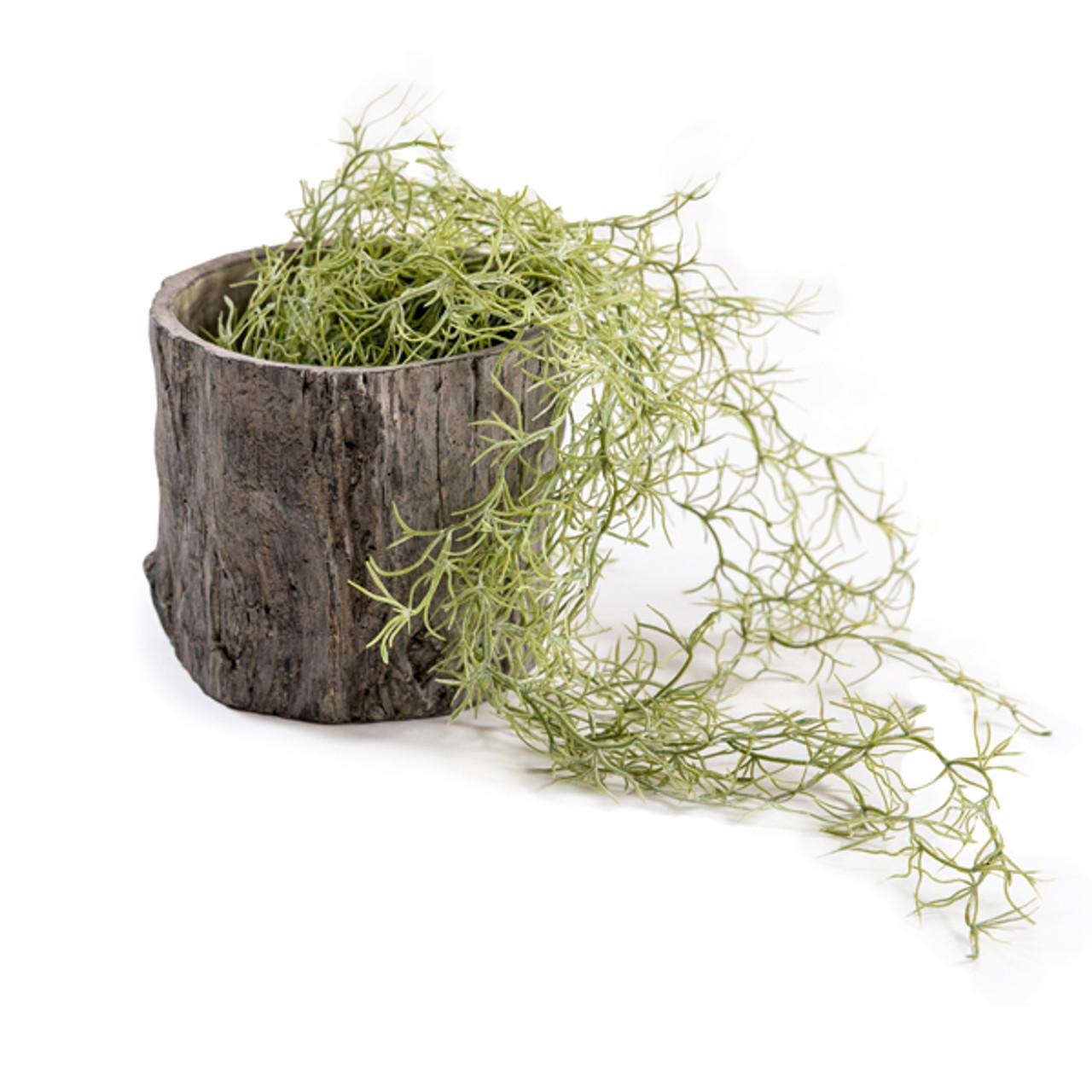 Cement Tree Stump Pot