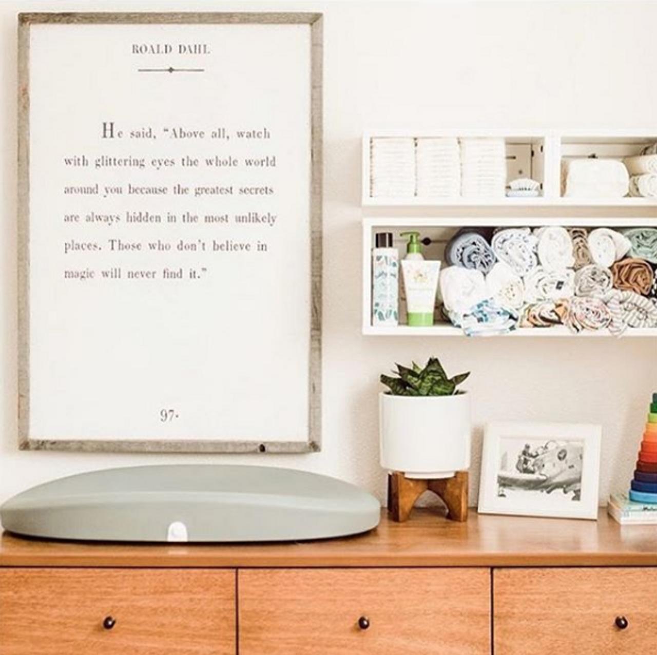 roald dahl art print - white with grey wood frame